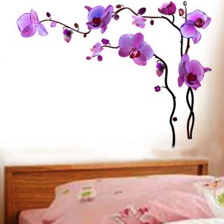 wall paper - Isolated Orchids